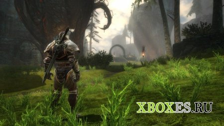 Kingdoms of Amalur: Reckoning получит второе DLC